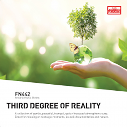 Third Degree of Reality